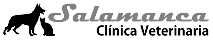 Clínica Veterinaria Salamanca